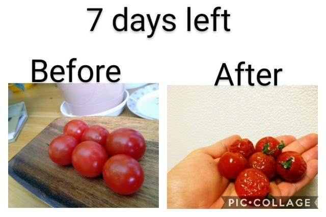 f:id:vegetablist:20201118120344j:image