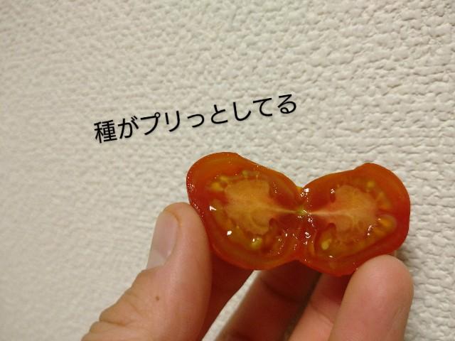 f:id:vegetablist:20201118120410j:image