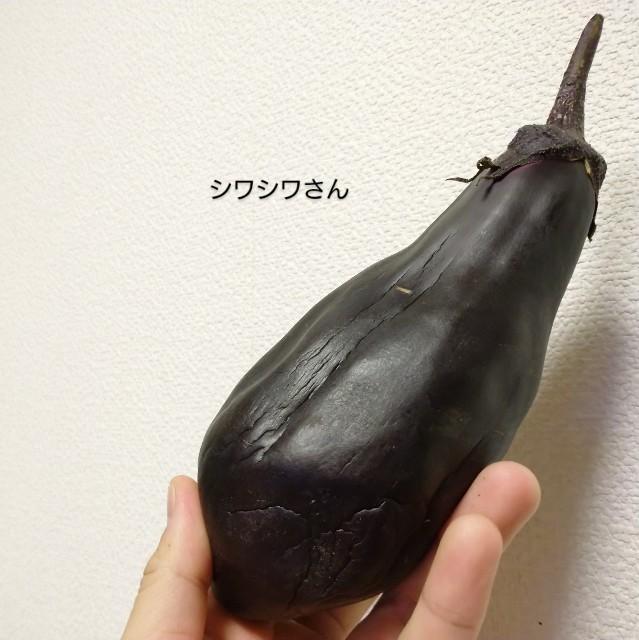 f:id:vegetablist:20210105223437j:image