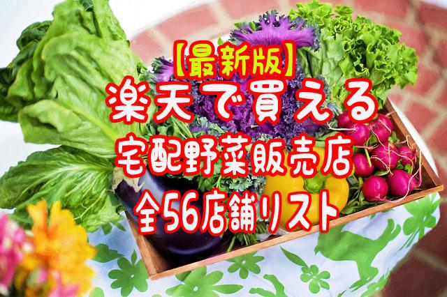 f:id:vegetarianman:20180826161957j:plain