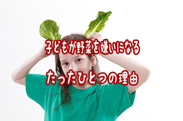 f:id:vegetarianman:20180828215809j:plain