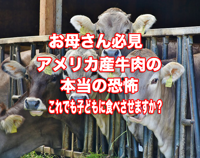 お母さん必見アメリア産の牛肉の本当の恐怖これでも子どもに食べさせますか?この記事のアイキャッチ画像