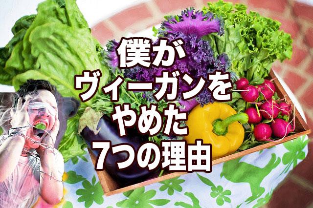 f:id:vegetarianman:20180905145100j:plain