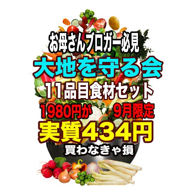 f:id:vegetarianman:20180908000153j:plain