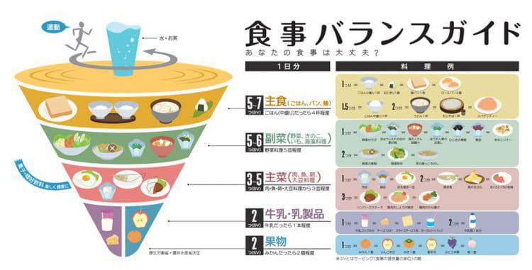 食事バランスガイドについて書かれた画像