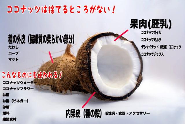 ココナッツオイルの使用用途を説明した画像