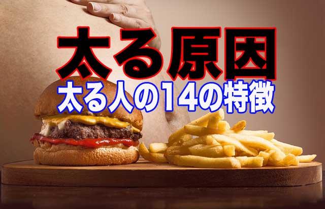 この記事のアイキャッチ画像。ハンバーガーとフライドポテトとお腹の出た太った人の写真
