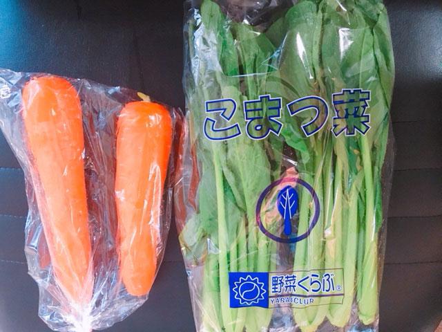 f:id:vegetarianman:20181205111502j:plain