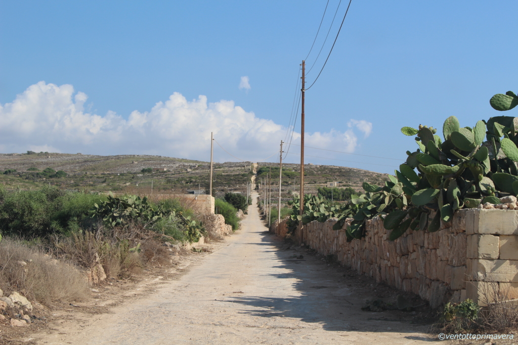 f:id:ventottoprimavera:マルタ;田舎道;果てしない
