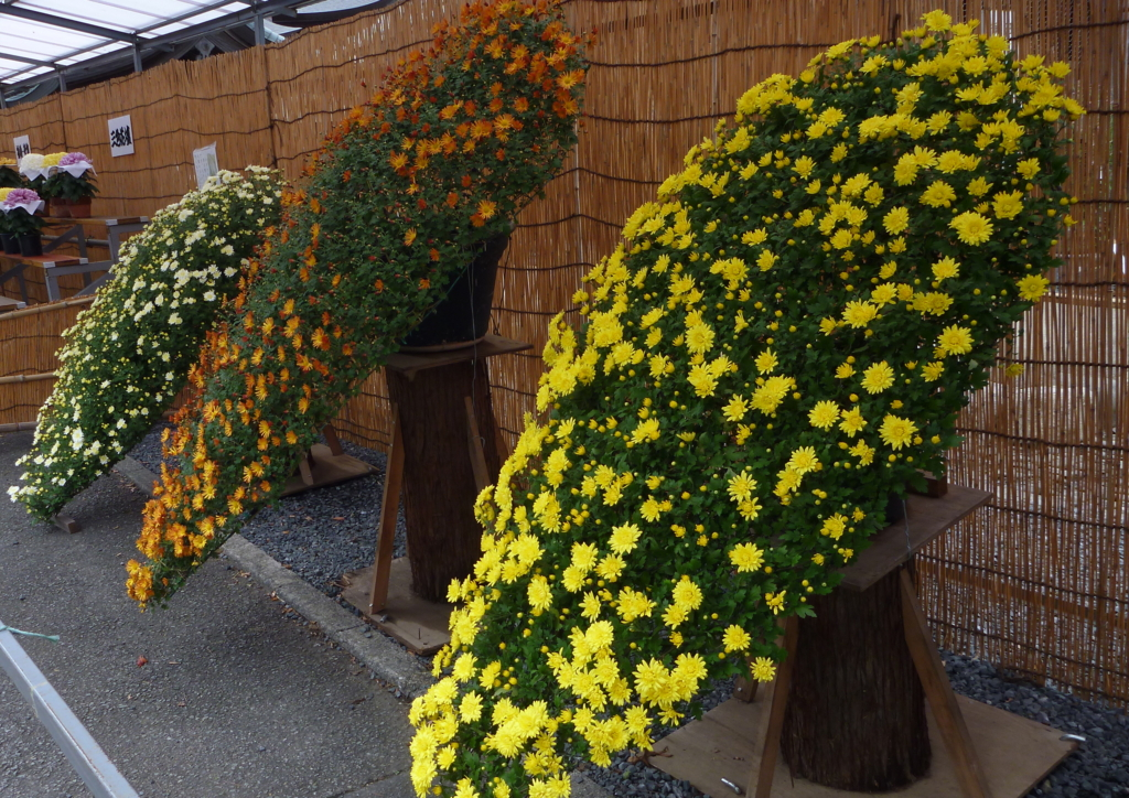 f:id:verandarosegarden:20161102201835j:plain