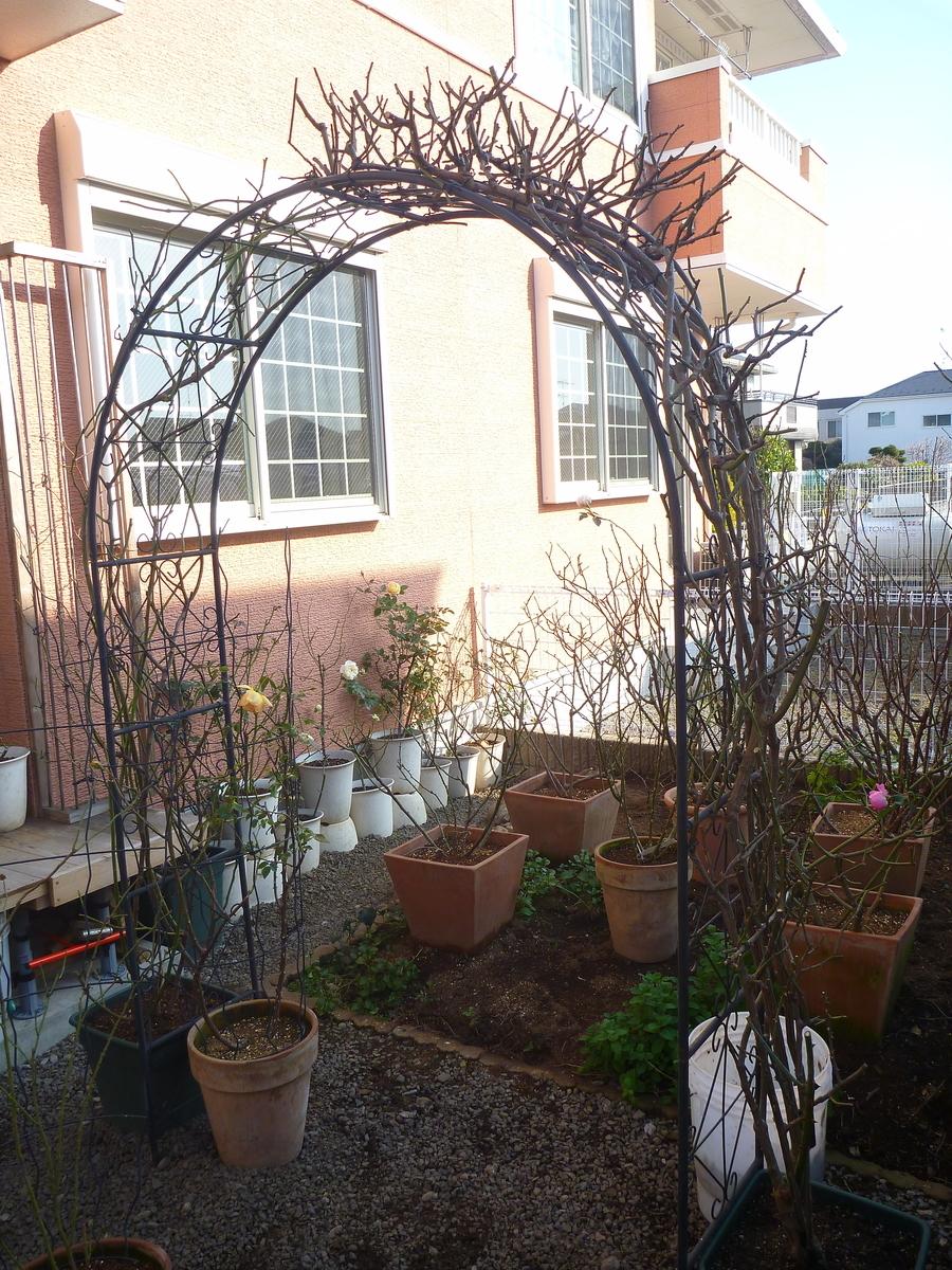 f:id:verandarosegarden:20200114200208j:plain