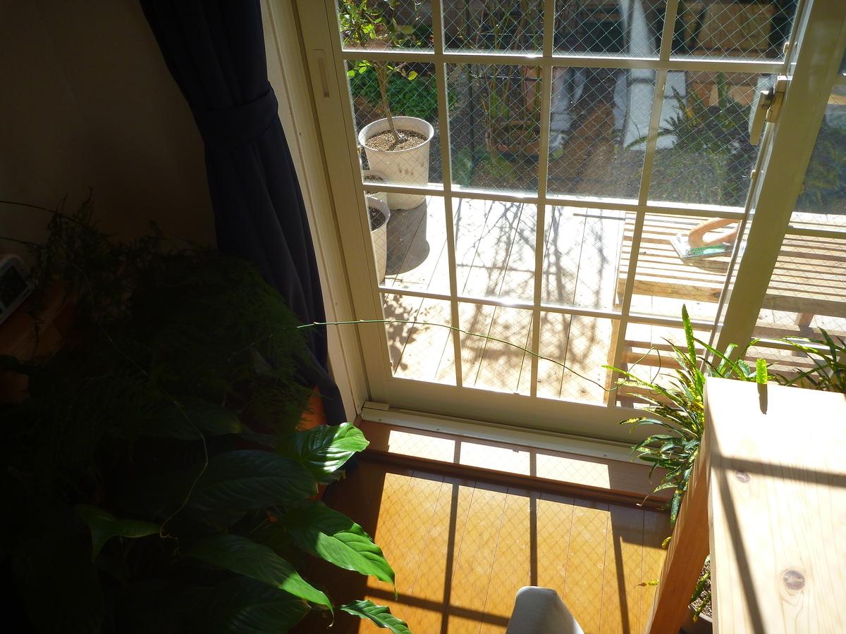 f:id:verandarosegarden:20200206164401j:plain