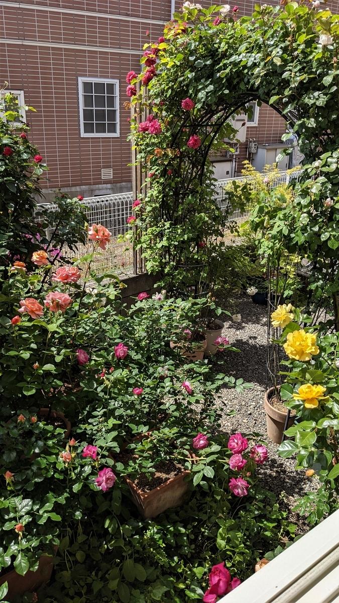 f:id:verandarosegarden:20210504101517j:plain