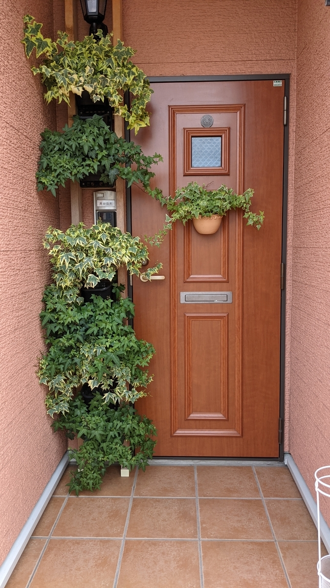f:id:verandarosegarden:20210607181119j:plain
