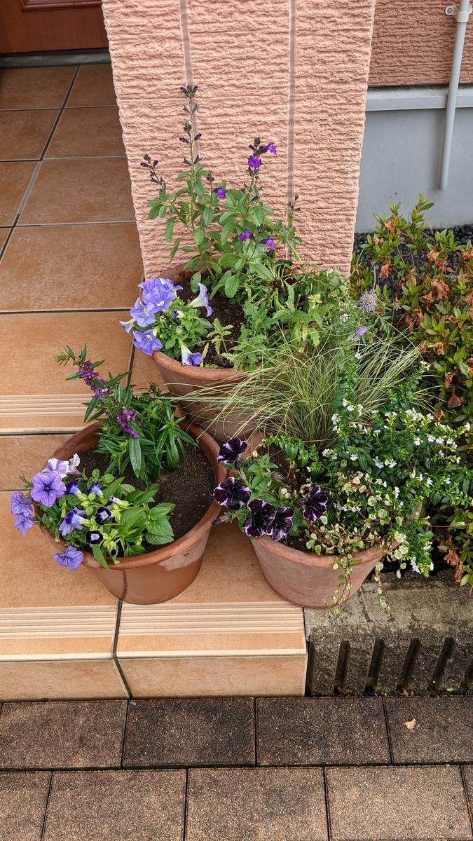 f:id:verandarosegarden:20210611195734j:plain
