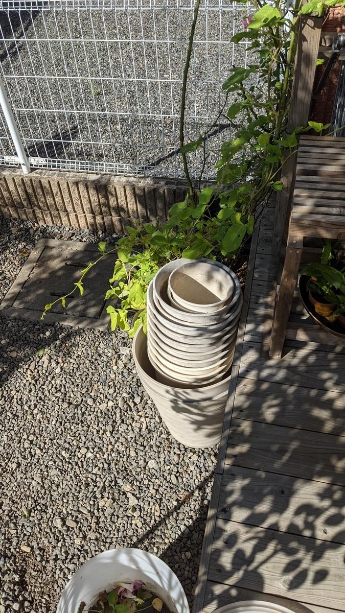 f:id:verandarosegarden:20210929155348j:plain