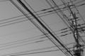 [散歩][モノクロ]空を見上げるといつも電線がある