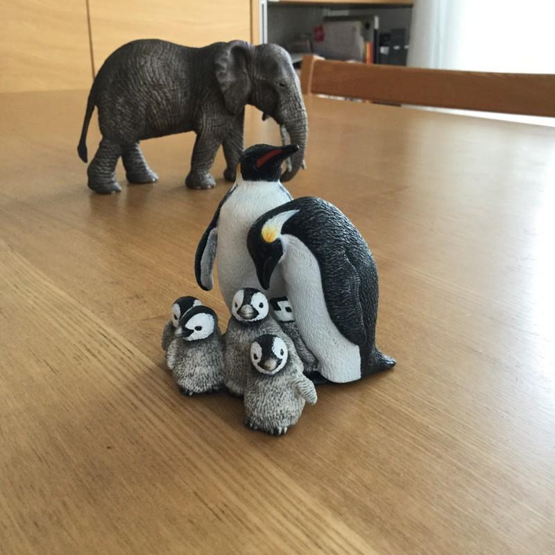 シュライヒ ペンギン親子