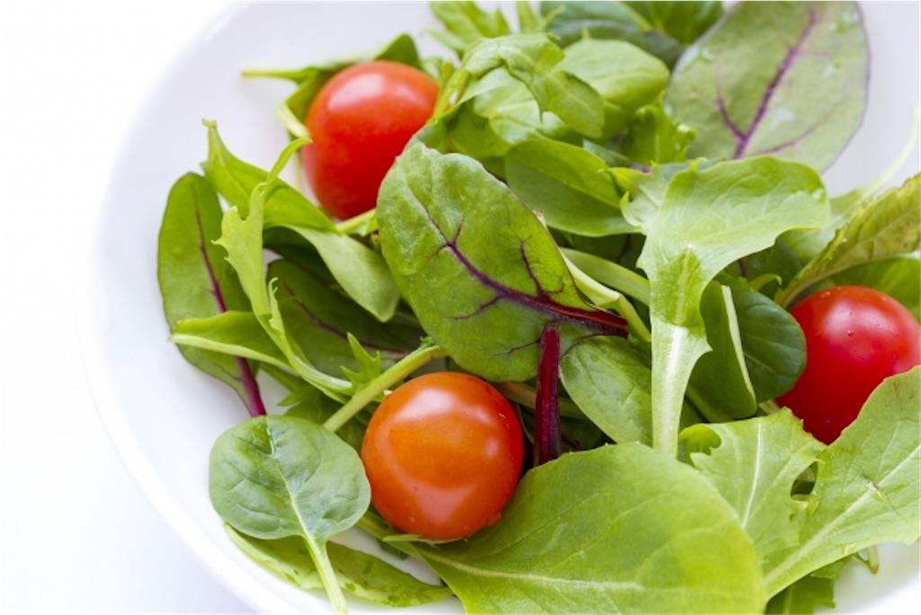 f:id:vet-nutrition:20200222111924j:image
