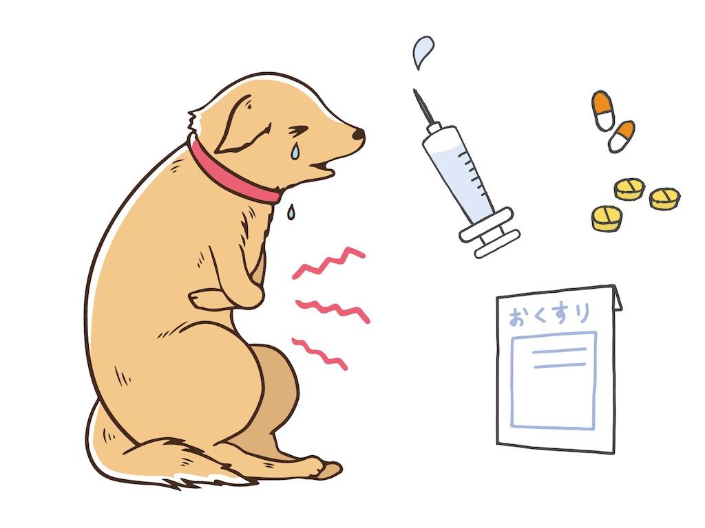 f:id:vet-nutrition:20200615224204j:image