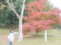 少女と紅葉  by peitarou