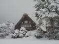深夜から降り始めた雪 by peitarou
