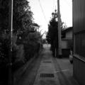 露地  by ta-san**
