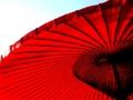 京の傘  BY こうみ