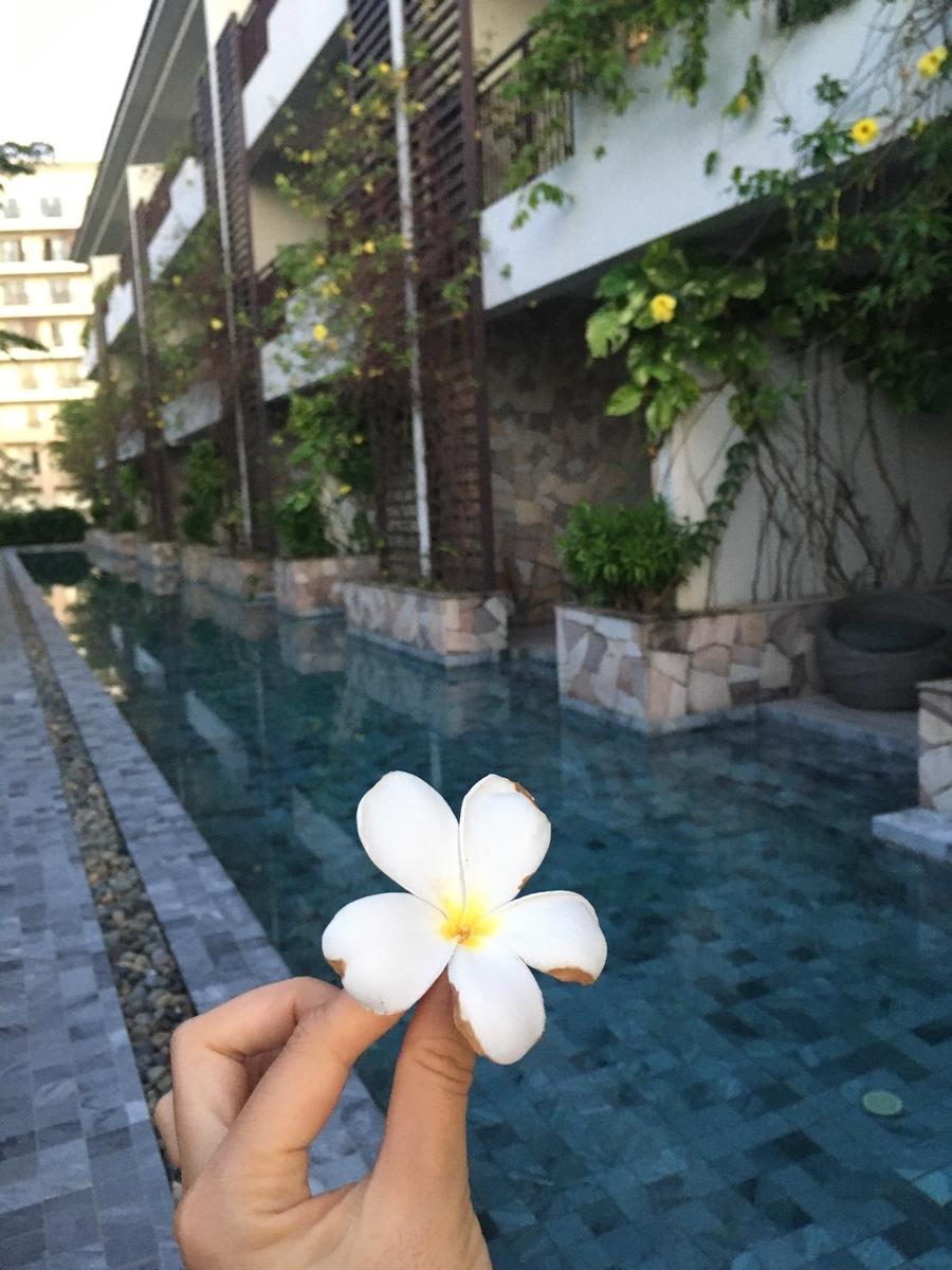 f:id:vietnam_guide:20201209001051j:plain