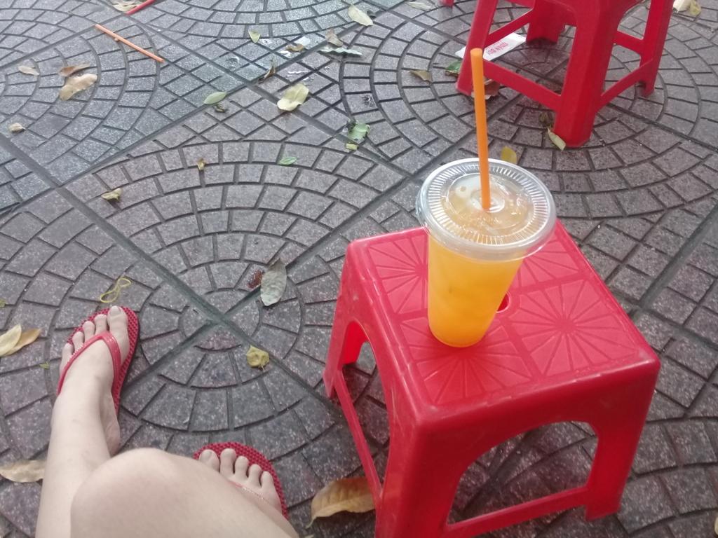 f:id:vietnamgirl:20170710224208j:plain