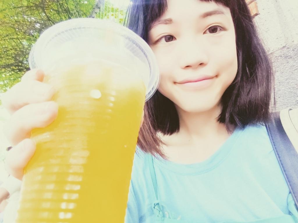 f:id:vietnamgirl:20170710233055j:plain