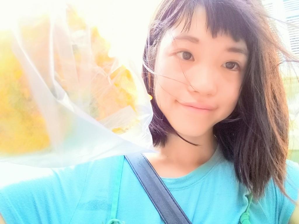 f:id:vietnamgirl:20170710233731j:plain