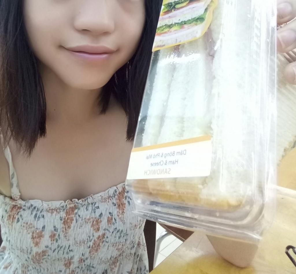 f:id:vietnamgirl:20170711194033j:plain