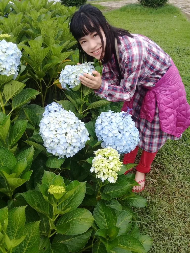 f:id:vietnamgirl:20170720222401j:plain