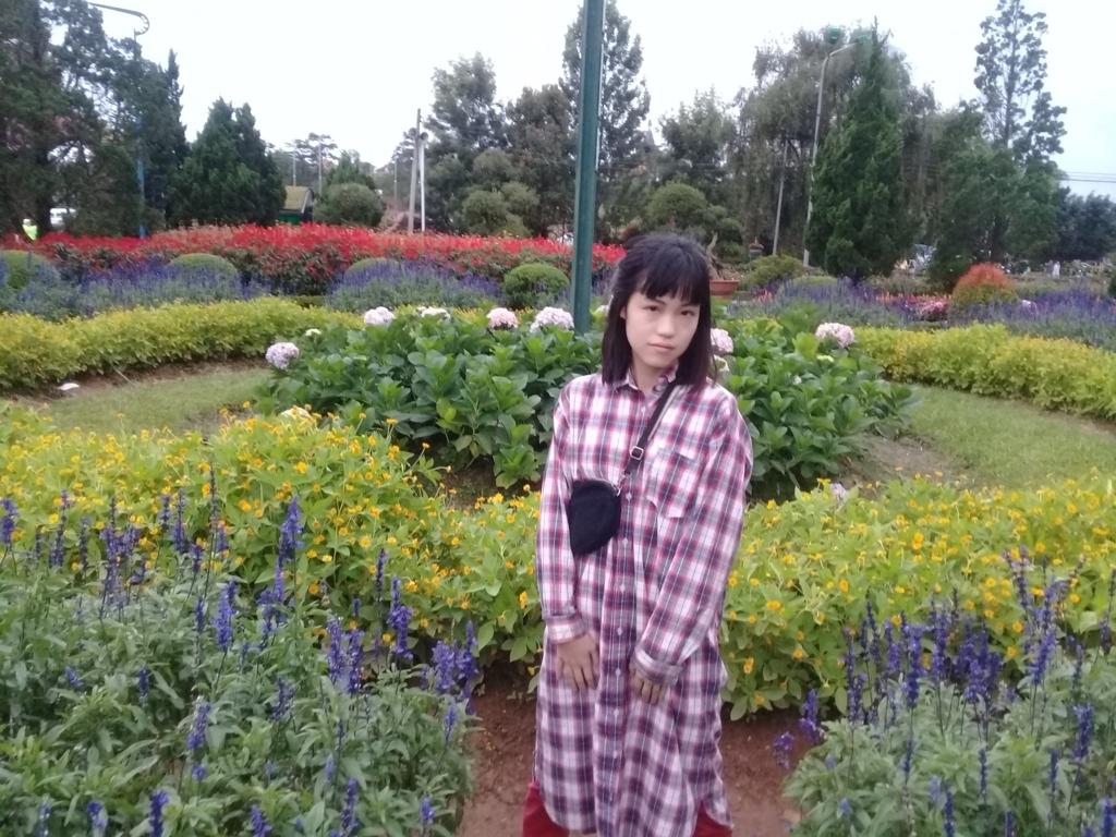 f:id:vietnamgirl:20170720222742j:plain