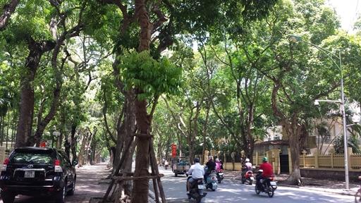 f:id:vietnamoni:20171022095635j:plain