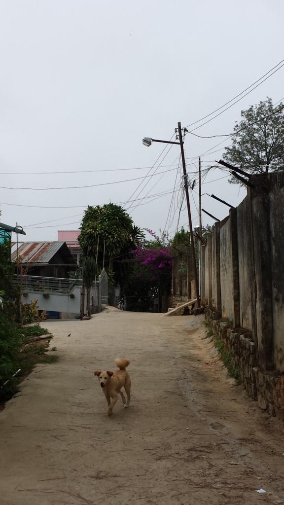 f:id:vietnamoni:20171210104745j:plain