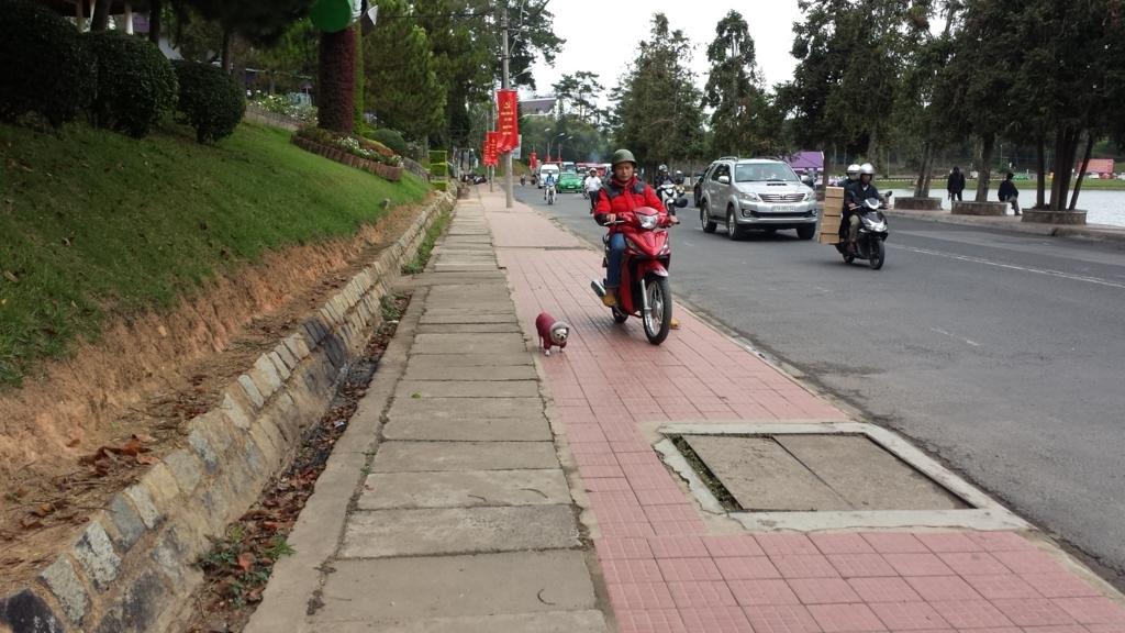 f:id:vietnamoni:20171210110206j:plain