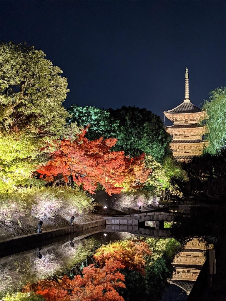 f:id:vika-kyoto:20201117173033j:image