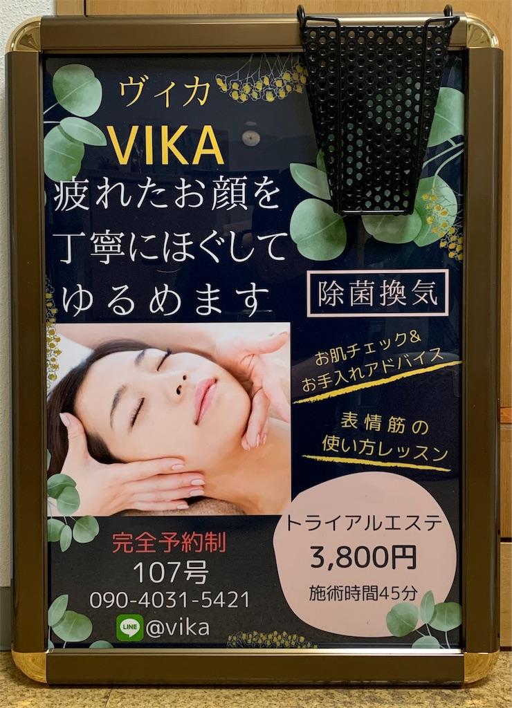 f:id:vika-kyoto:20210314152833j:image