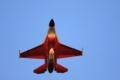[航空機][戦闘機][F-2]