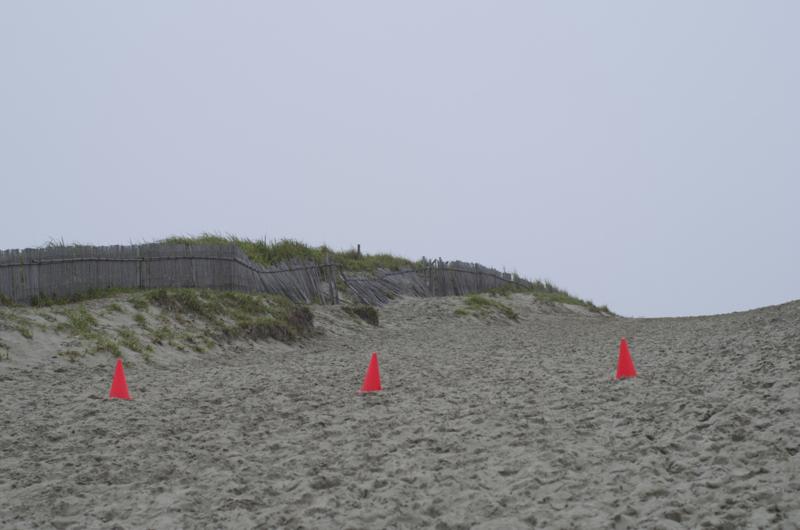 浜岡海岸3