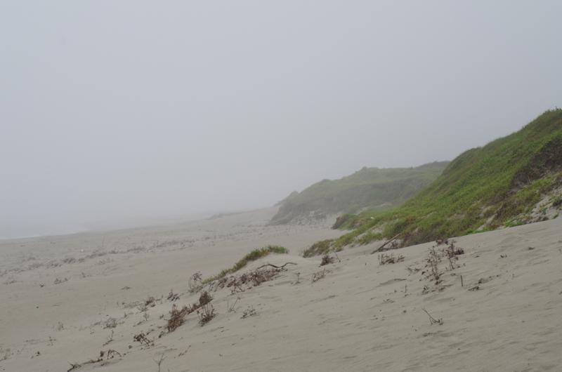 浜岡海岸2