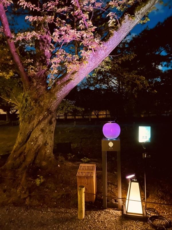 f:id:violetmacaronrose:20210420072608j:plain