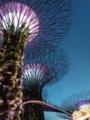 シンガポール 4