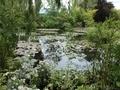 モネの池2