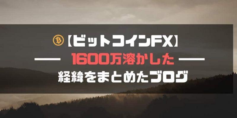 【ビットコインFX】1600万溶かした 経緯をまとめたブログ