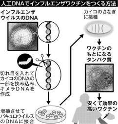 f:id:vitamin_G:20141205222823j:image
