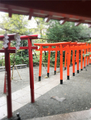京都の伏見稲荷大社っぽいやつ