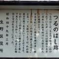 日本最古の橋・つるの橋